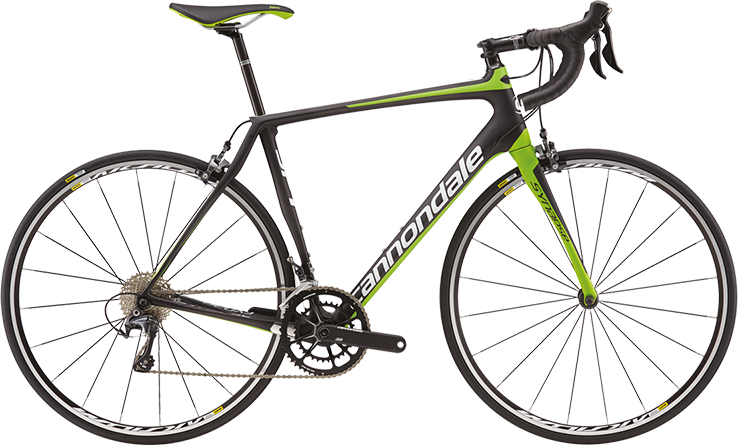 Synapse Carbon Ultegra Compact
