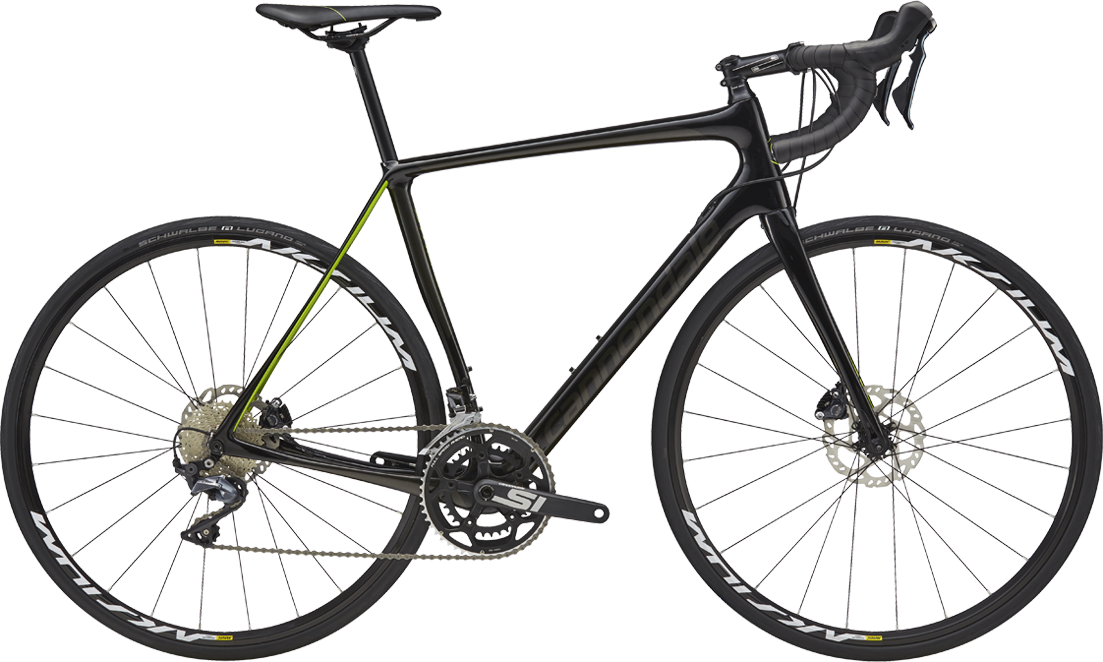 Synapse Ultegra Disc